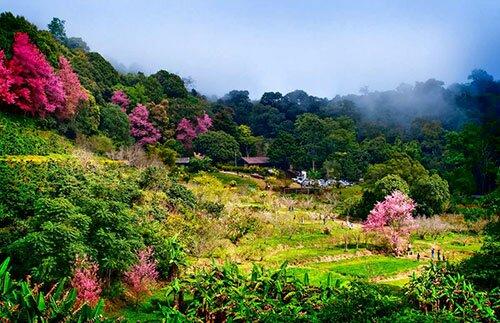 หมู่บ้านกลางหุบเขา อุทยานแห่งชาติดอยสุเทพ-ดอยปุย
