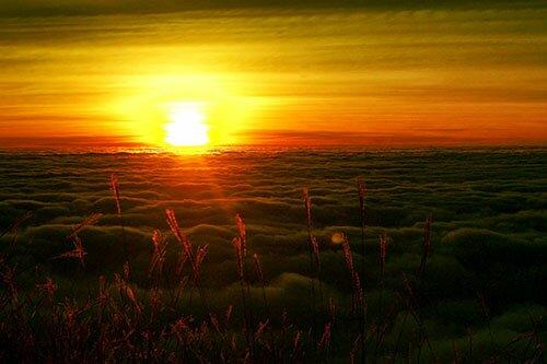 ทะเลหมอก ยามเช้า อุทยานแห่งชาติขุนแจ