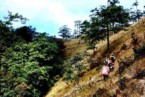 เดินป่าพิชิตยอดเขาดอยลังกา อุทยานแห่งชาติขุนแจ