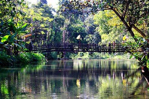 สะพานไม้ อุทยานแห่งชาติถ้ำปลา น้ำตกผาเสื่อ