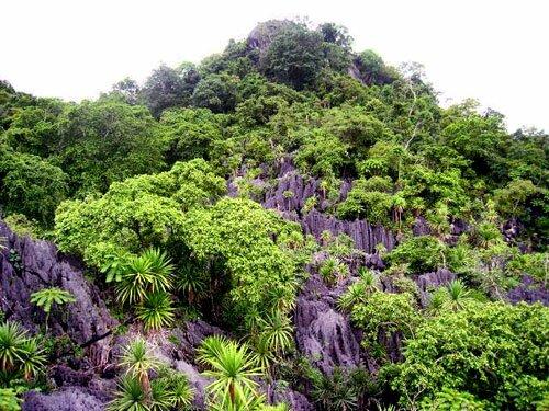 ภูเขาหินปูน อุทยานแห่งชาติดอยผากลอง