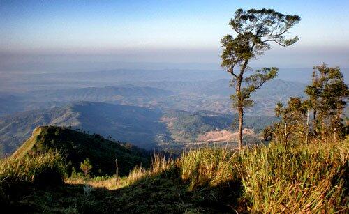 สภาพป่าไม้ ภูเขา วนอุทยานภูลังกา