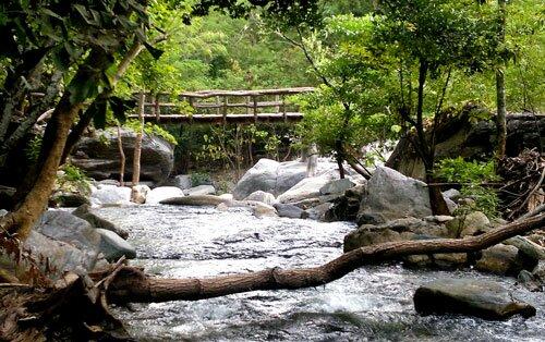สะพานข้ามธารน้ำ อุทยานแห่งชาติลานสาง
