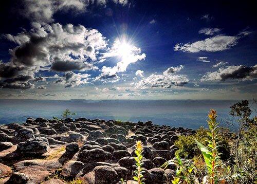 ลานหินปุ่ม อุทยานแห่งชาติภูหินร่องกล้า