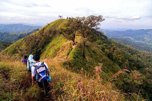 เดินป่า เขาช้างเผือก อุทยานแห่งชาติทองผาภูมิ