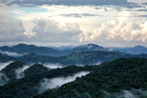 ภูเขา ป่าไม้ อุทยานแห่งชาติเขาใหญ่