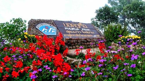ป้าย สวนดอกไม้ อุทยานแห่งชาติภูเรือ