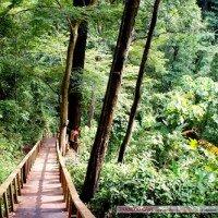 เส้นทางเดินศึกษาธรรมชาติ อุทยานแห่งชาติเฉลิมรัตนโกสินทร์