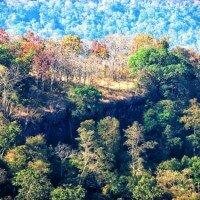 ภูผายล อุทยานแห่งชาติภูผายล