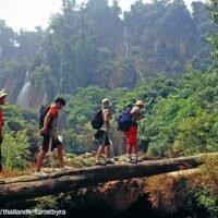 เดินป่าเมืองไทย