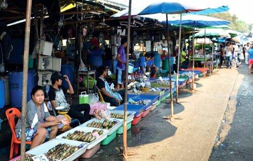 ตลาด สถานที่ซื้อหอยนางรม